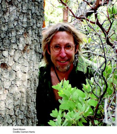 Photo of David Abram