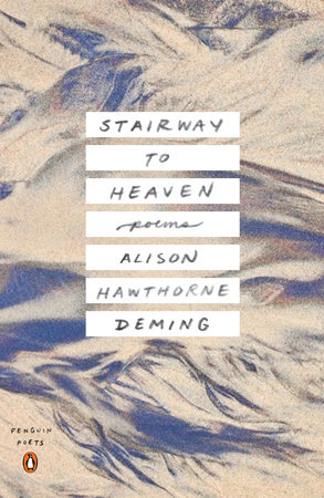 Stairway to Heaven by Alison Deming