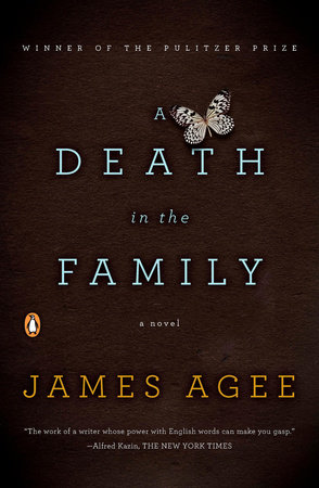Image result for a death in the family james agee