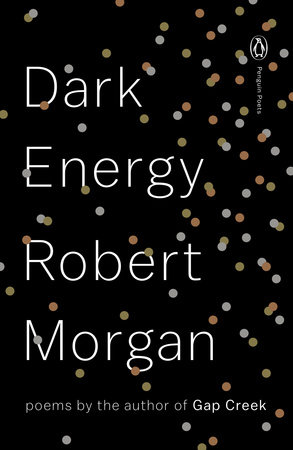 Dark Energy Book Cover Picture