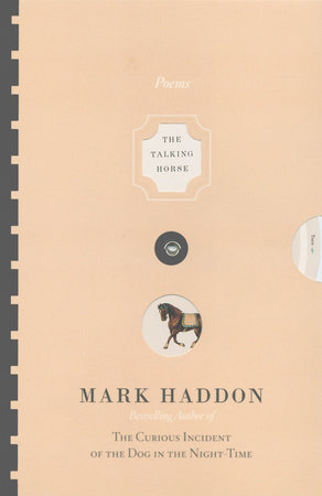 The Talking Horse and the Sad Girl and the Village Under the Sea by Mark Haddon