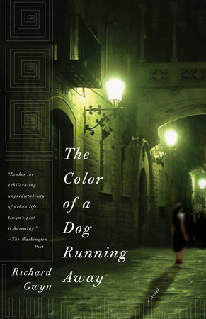 The Color of A Dog Running Away