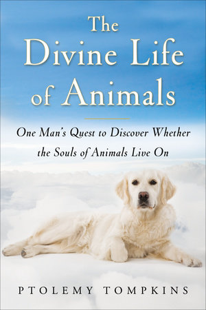 The Divine Life of Animals by Ptolemy Tompkins
