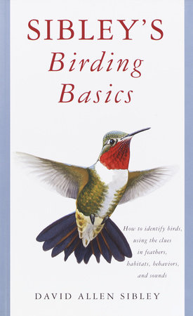 Sibley's Birding Basics by David Allen Sibley