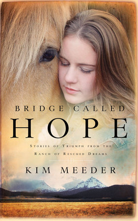 Bridge Called Hope by Kim Meeder