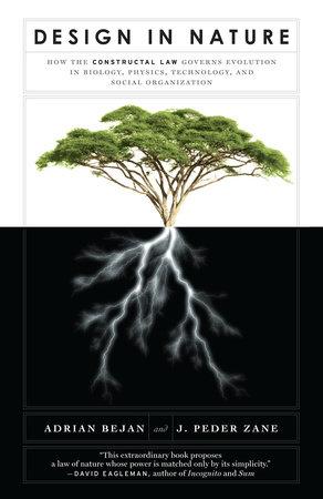Design in Nature by Adrian Bejan and J. Peder Zane
