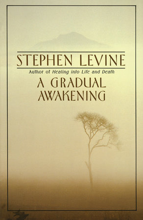 A Gradual Awakening by Stephen Levine