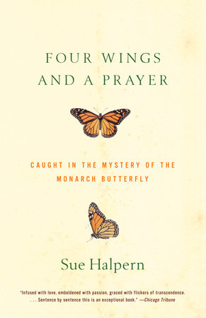 Four Wings and a Prayer by Sue Halpern