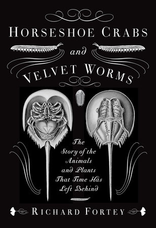 Horseshoe Crabs and Velvet Worms by Richard Fortey