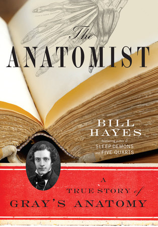 The Anatomist by Bill B. Hayes