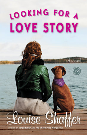 Looking for a Love Story by Louise Shaffer