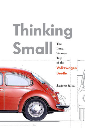 Thinking Small by Andrea Hiott