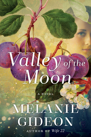 Valley of the Moon Book Cover Picture