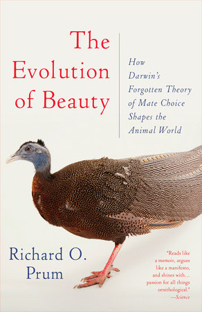 The cover of the book The Evolution of Beauty