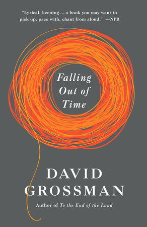 Falling Out of Time by David Grossman