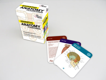 Essential Anatomy Flashcards by Princeton Review