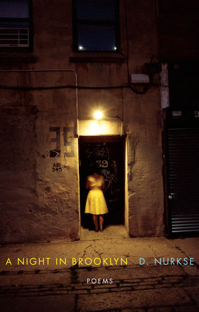 A Night in Brooklyn by D. Nurkse