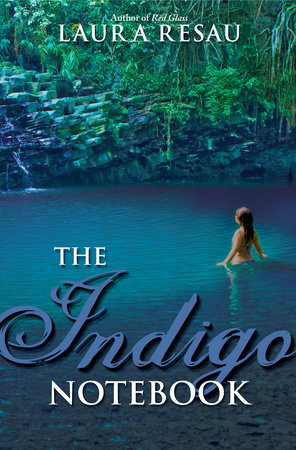 The Indigo Notebook