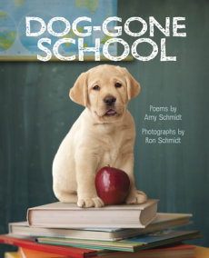 Dog-Gone School