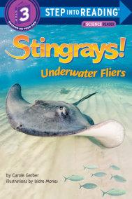 Stingrays! Underwater Fliers