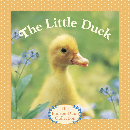 The Little Duck by Judy Dunn