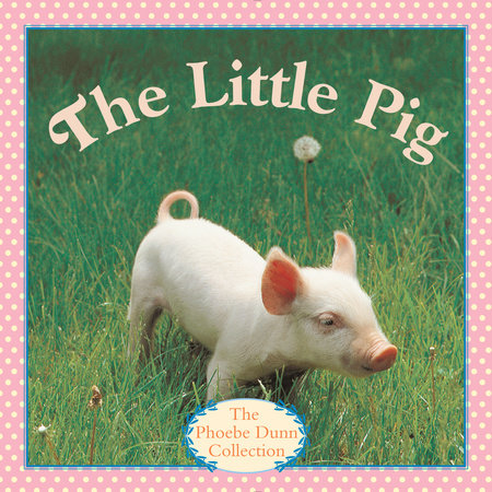 The Little Pig by Judy Dunn