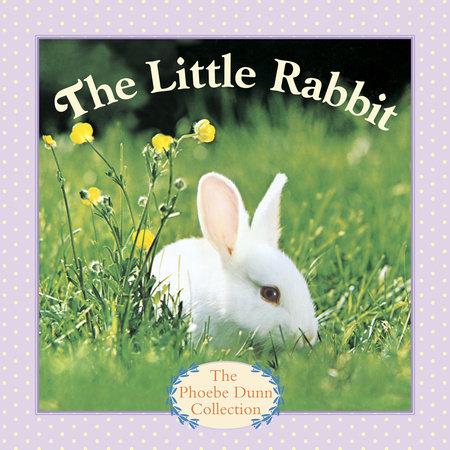THE LITTLE RABBIT by Judy Dunn