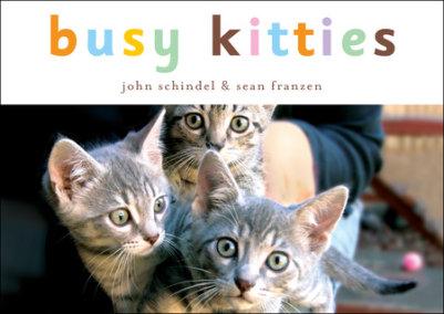 Busy Kitties