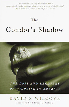 The Condor's Shadow by David S. Wilcove