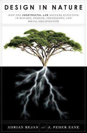 Design in Nature