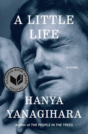 A Little Life Book Cover Picture