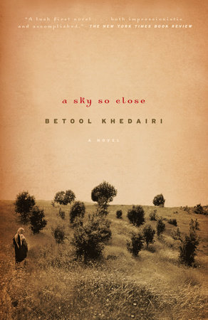The cover of the book A Sky So Close