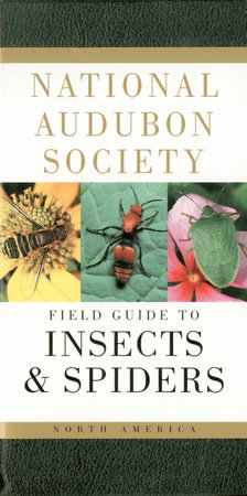 National Audubon Society Field Guide to Insects and Spiders
