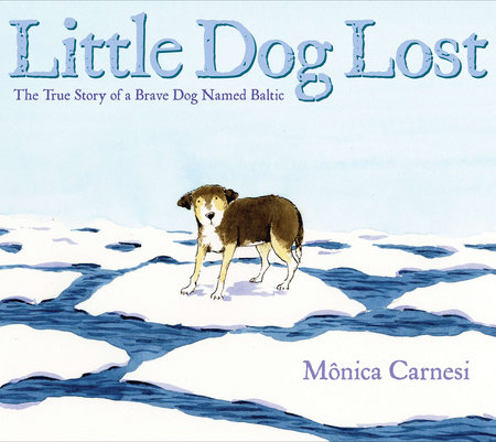 Little Dog Lost by Mônica Carnesi