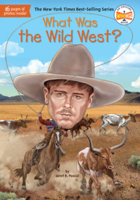 What Was the Wild West?