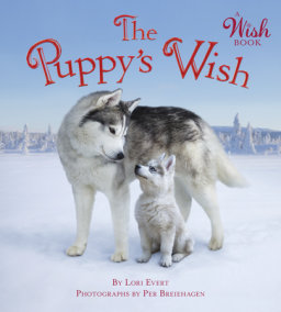 The Puppy's Wish (A Wish Book)