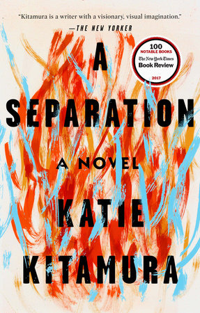 The cover of the book A Separation