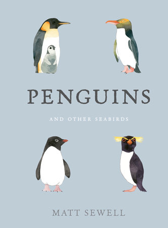 Penguins and Other Seabirds by Matt Sewell