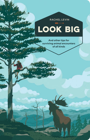 The cover of the book Look Big