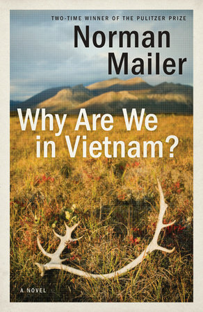 The cover of the book Why Are We in Vietnam?