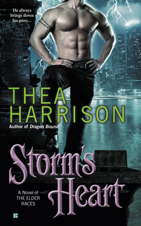 Storm's Heart by Thea Harrison