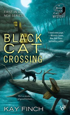Black Cat Crossing by Kay Finch