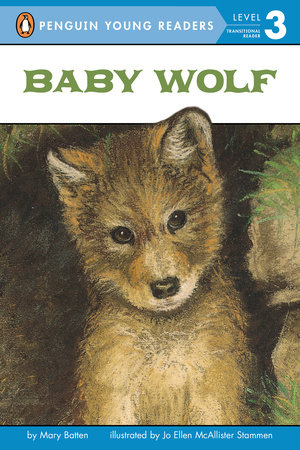 Baby Wolf by Mary Batten