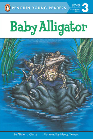 Baby Alligator by Ginjer L. Clarke
