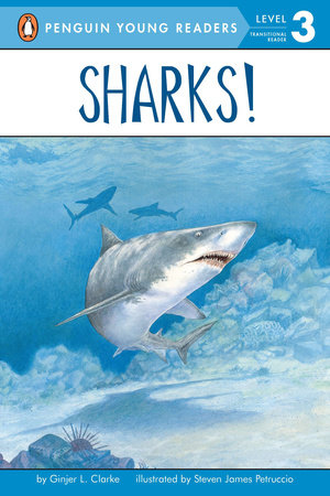 Sharks! by Ginjer L. Clarke