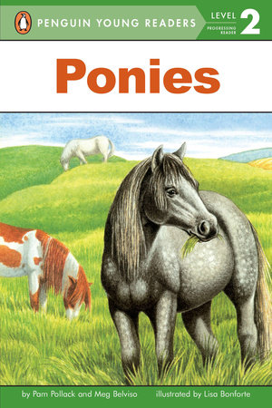Ponies by Pam Pollack and Meg Belviso