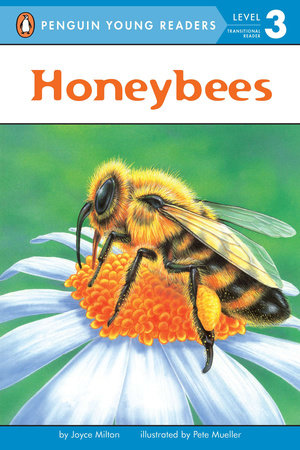 Honeybees by Joyce Milton