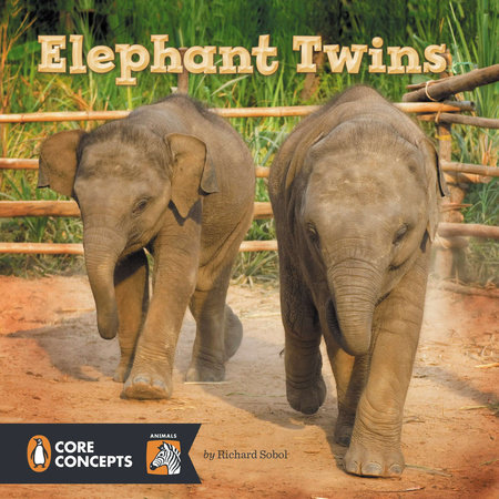 Elephant Twins by Richard Sobol