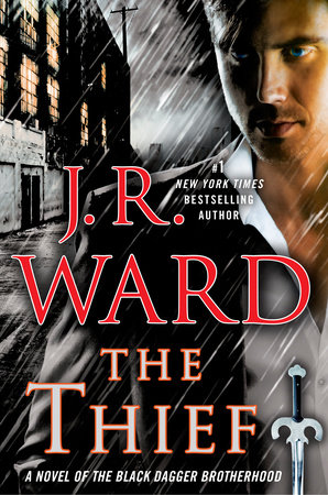 The cover of the book The Thief