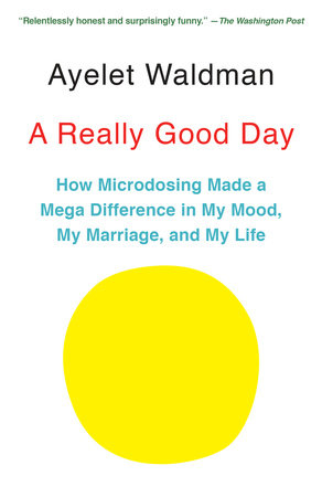 A Really Good Day by Ayelet Waldman
